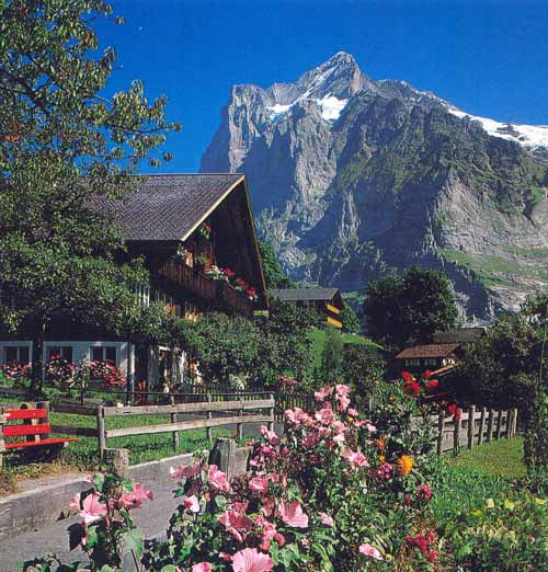 View of Grindelwald